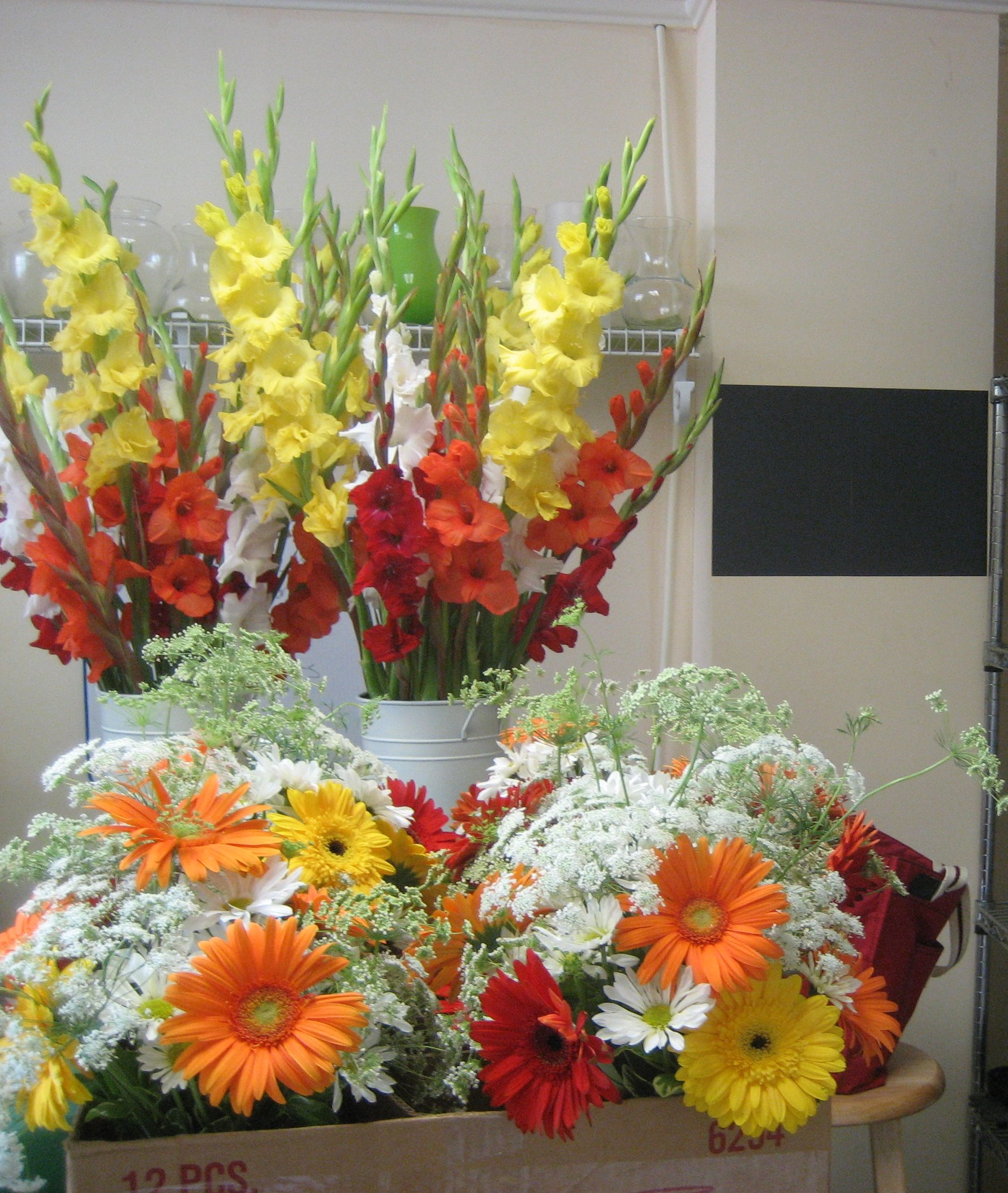 Orange, yellow and red. Gerber daisies, gladiolas and queen anne's lace