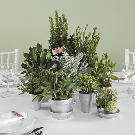 Centerpieces herbs Tips & Tricks: Fresh Herb Centerpieces