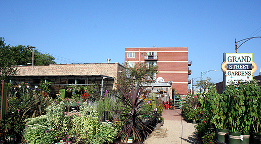 Garden Center in Chicago Grand Street Gardens